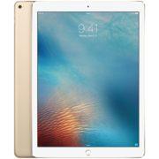 iPad Pro 12.9-inch (Wi-Fi), 32GB, Gold, Product leeftijd 23 maanden